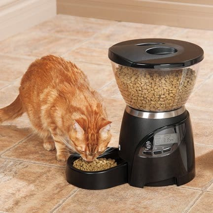 Properly Clean and Maintain Your Automatic Cat Feeder