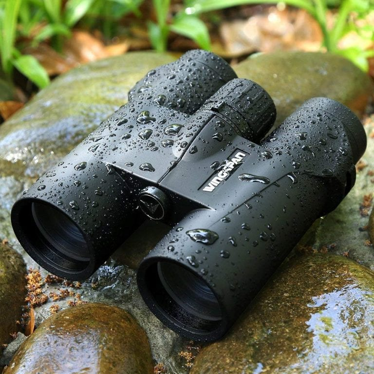 Bird Watching Binoculars Buying Guide