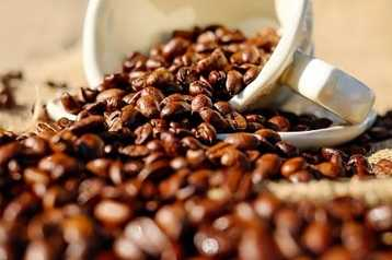 Coffee Beans Buying Guides