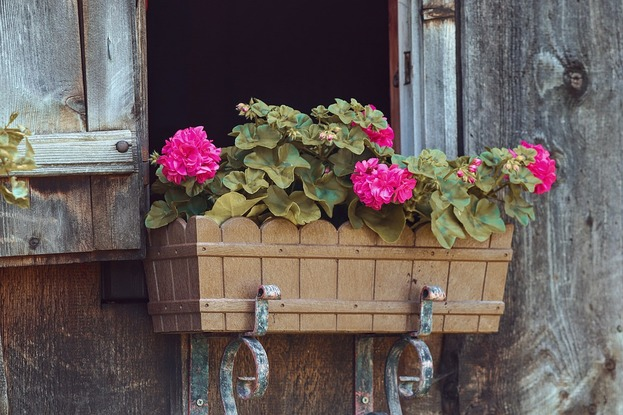 Pros And Cons Of Homes With An East-Facing Garden