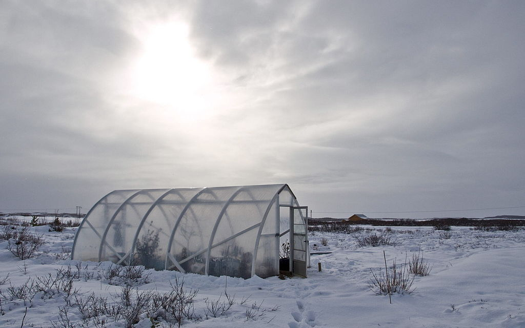 Winter greenhouse by Axel Kristinsson